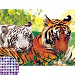Алмазная вышивка с частичным заполнением на раме «Тигры», 30 x 40 см. Набор для творчества
