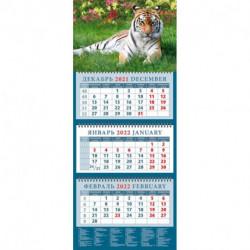 Календарь квартальный на 2022 год 'Год тигра. Сила и грация' (14202)