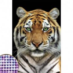 Алмазная вышивка с частичным заполнением «Тигр» 20x30 см, на холсте