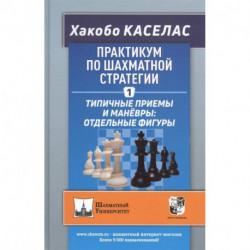 Практикум по шахматной стратегии-1. Типичные приёмы и манёвры:отдельные фигуры (6+)