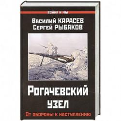 Рогачевский узел. От обороны к наступлению.