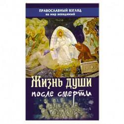 Жизнь души после смерти. Православный взгляд на мир