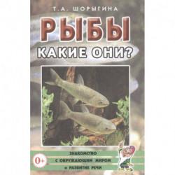 Рыбы. Какие они?