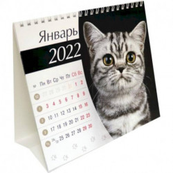 Календарь-домик (евро) Кошки. 2022 год