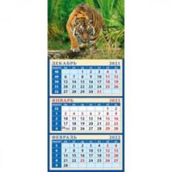 Календарь квартальный на магните на 2022 год 'Год тигра. Настоящий хозяин джунглей' (34209)