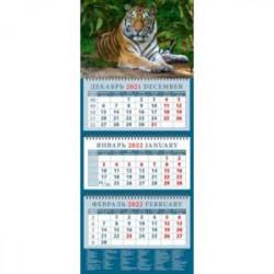 Календарь квартальный на 2022 год 'Год тигра. Умиротворенный хозяин джунглей' (14206)