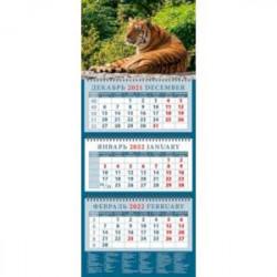 Календарь квартальный на 2022 год 'Год тигра. Сила и уверенность' (14207)