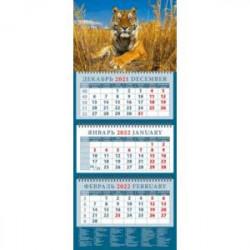 Календарь квартальный на 2022 год 'Год тигра. Молодой красавец в зарослях травы' (14208)