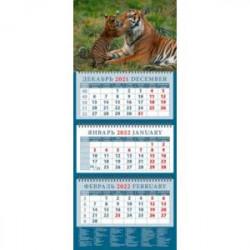 Календарь квартальный на 2022 год 'Год тигра. Тигриные нежности' (14210)
