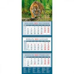 Календарь квартальный на 2022 год 'Год тигра. Настоящий хозяин джунглей' (14214)