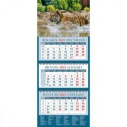 Календарь квартальный на 2022 год 'Год тигра. Приятное купание' (14221)