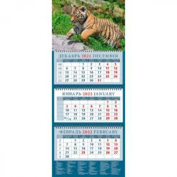 Календарь квартальный на 2022 год 'Год тигра. Симпатичный тигренок в прыжке' (14222)
