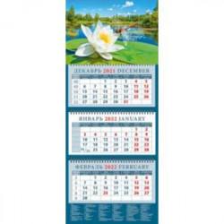 Календарь квартальный на 2022 год 'Стрекоза на водяной лилии' (14247)