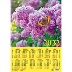 Календарь настенный на 2022 год 'Бабочка на сирени' (90208)