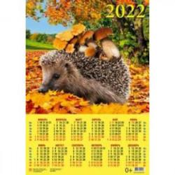 Календарь настенный на 2022 год 'Ёжик с грибами' (90212)