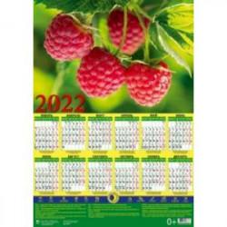 Календарь настенный на 2022 год 'Лунный календарь. Малина' (90217)