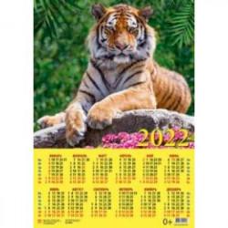 Календарь настенный на 2022 год 'Год тигра. Симпатичный хозяин джунглей' (90220)
