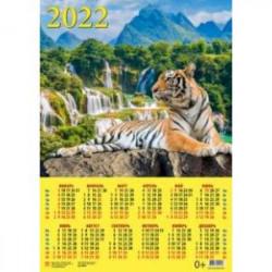 Календарь настенный на 2022 год 'Год тигра. Великолепный тигр у водопада' (90221)
