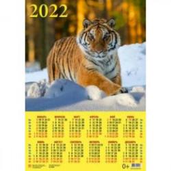 Календарь настенный на 2022 год 'Год тигра. В зимнем лесу' (90222)