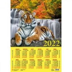 Календарь настенный на 2022 год 'Год тигра. Отдых у воды' (90225)