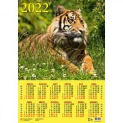 Календарь настенный на 2022 год 'Год тигра. Спокойствие и сосредоточенность' (90226)