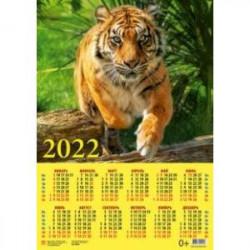 Календарь настенный на 2022 год 'Год тигра. Настоящий хозяин джунглей' (90228)