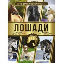 Большая энциклопедия. Лошади