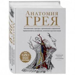 Анатомия Грея. Анатомические структуры с оригинальной и современной терминологией на английском, латинском и русском