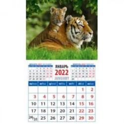 Календарь 2022 'Год тигра.Тигрица с тигренком' (20232)