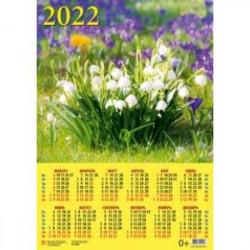 Календарь настенный на 2022 год 'Подснежники' (90206)