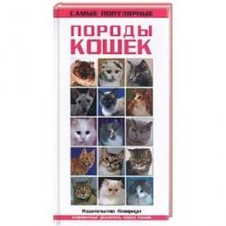 Самые популярные виды кошек