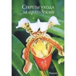 Секреты ухода за орхидеями